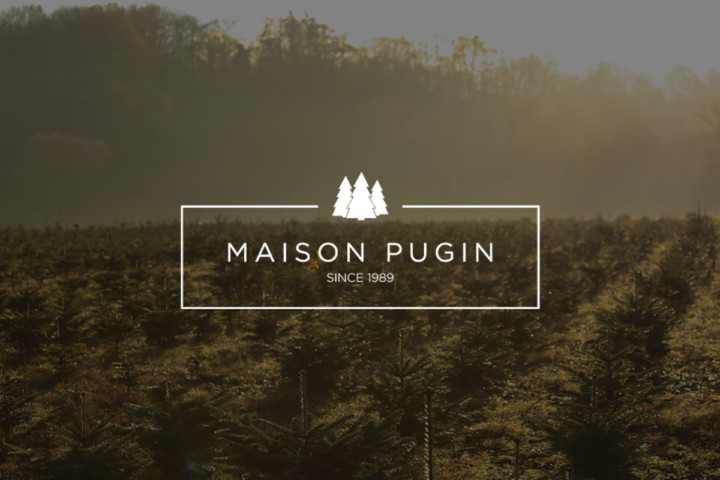 Maison Pugin